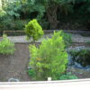 34 Giardino vista2