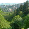 40 Vista panoramica1